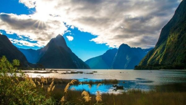 rent a car in New Zealand